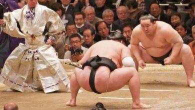 Photo of Десять необычных видов боевых искусств