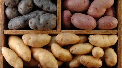 Photo of Секреты приготовления вкусной, жареной картошки