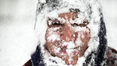Photo of Стоит ли бояться холода: все о вреде и пользе низких температур