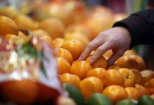 Photo of Главный фрукт зимы или почему тебе стоит есть мандарины чаще